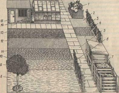 пример плана домашнего огорода